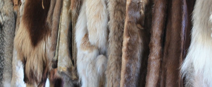 Shoes in the fur trade