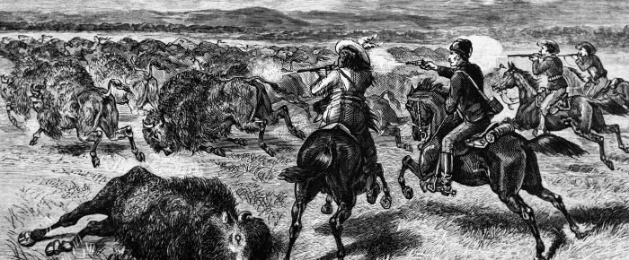 Paul Kane's Buffalo Hunt
