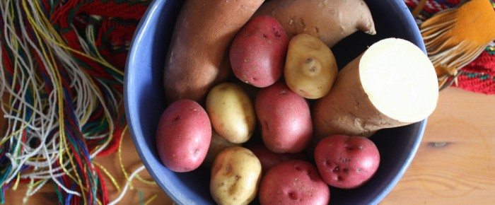 Potatoes at Fort Alexandria